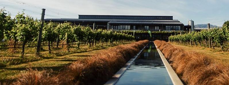 Villa Maria Malborough Winery, NZ