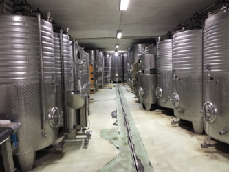 primary fermentation tanks