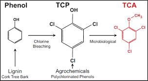 TCA (Trichloroanisole)