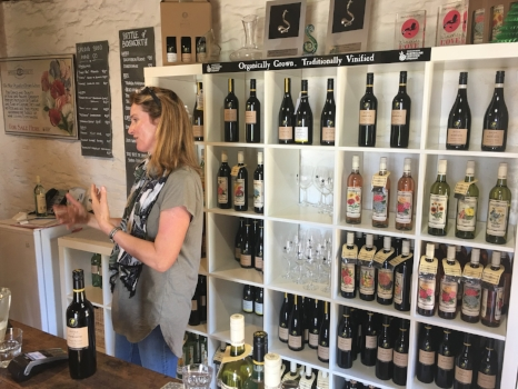 Battle of Bosworth wine tasting room
