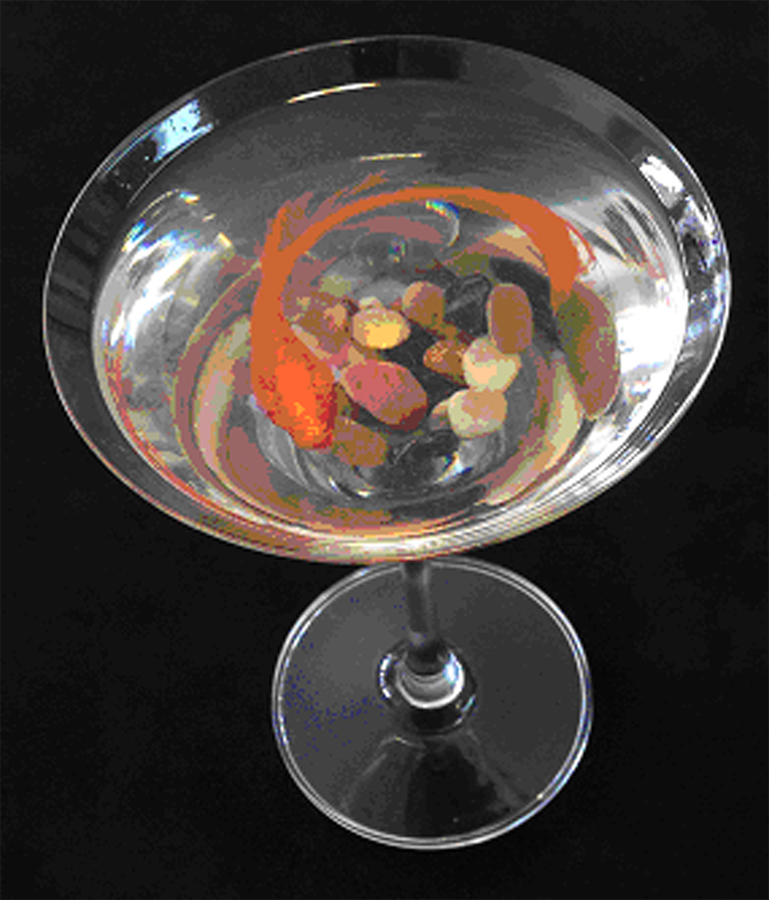 Koi in Martini Glass (14-23663)
