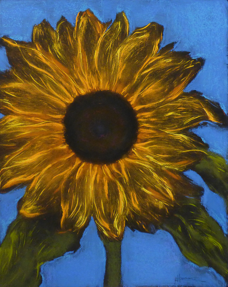 Iconic Sunflower (16-24088)