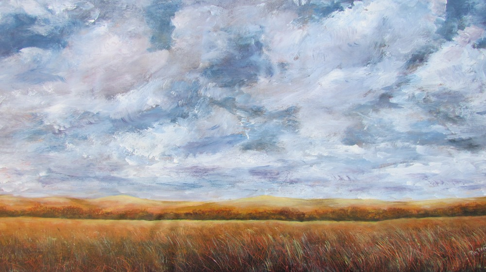 Clouds Racing Over the Prairie (16-24094)