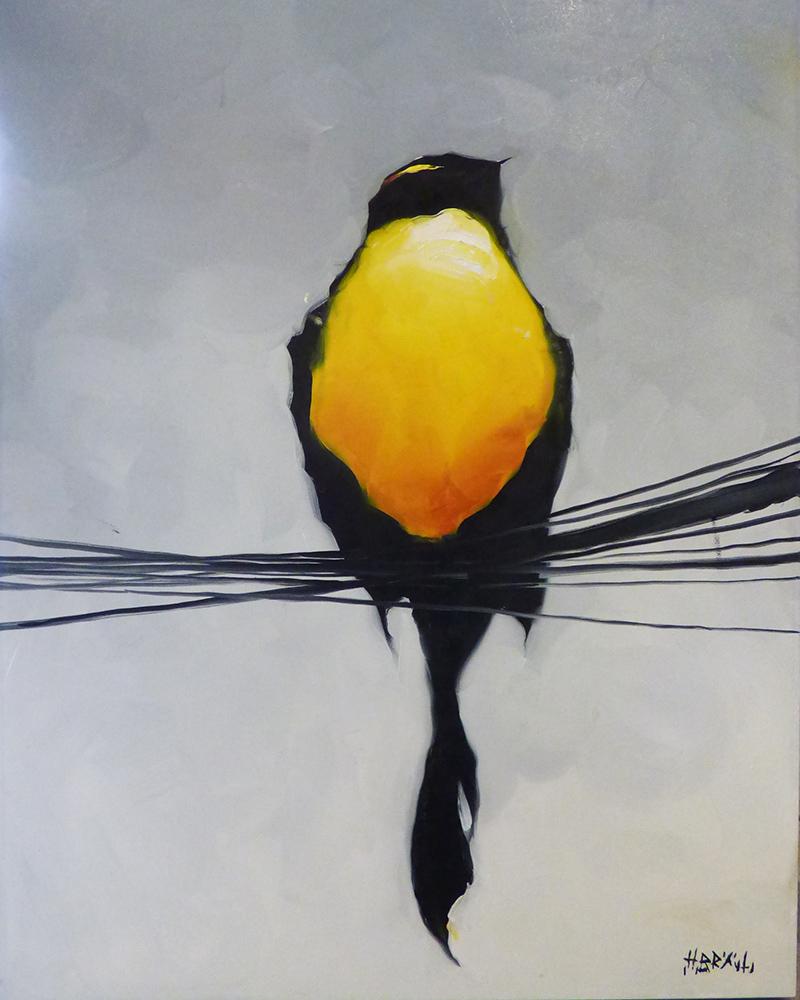 Yellow Bird (PP-15157)