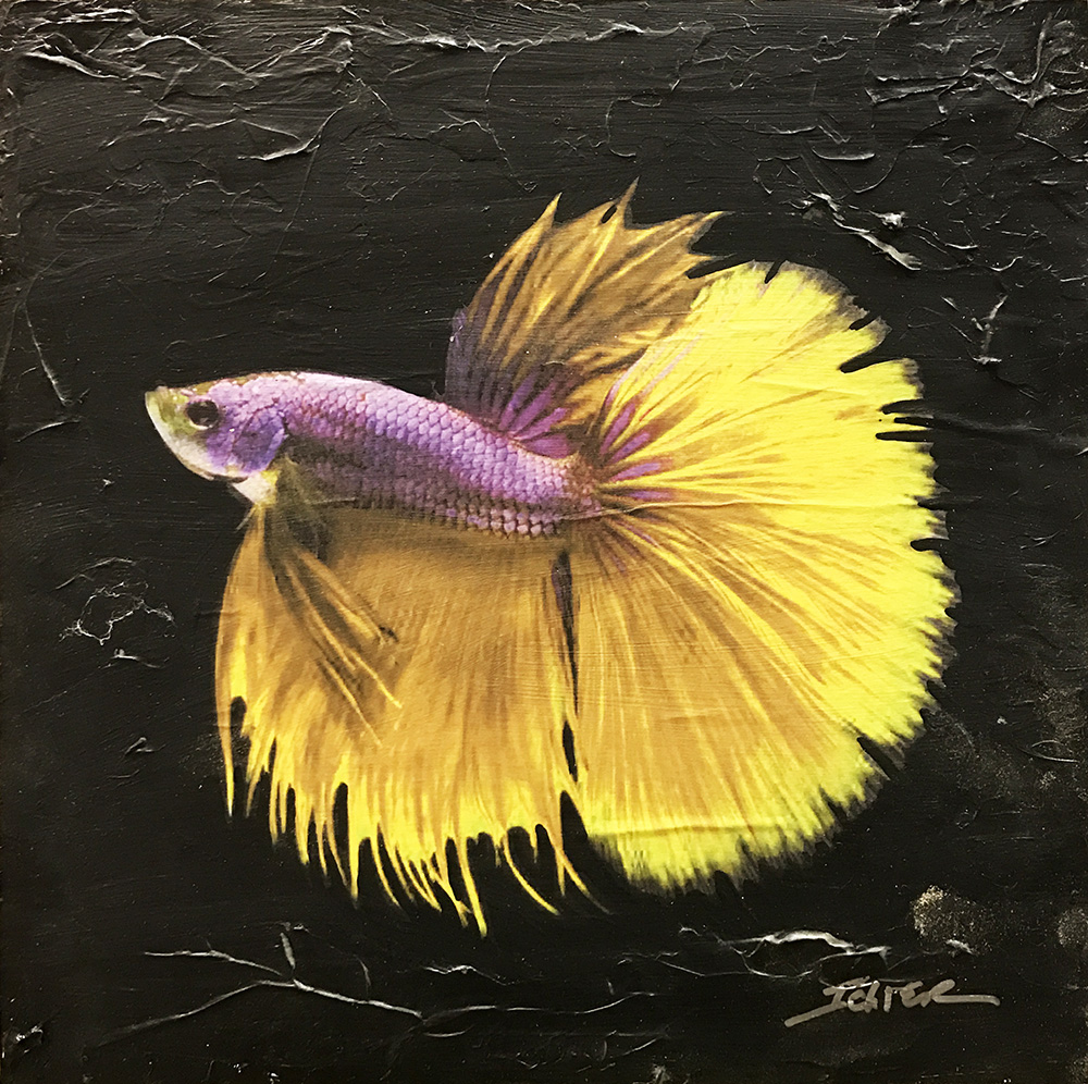 17-24572 Ichter Gold and Purple Fish 10x10 mixed media.JPG
