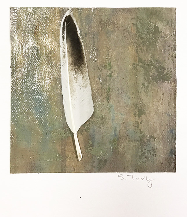 """""""Feather #1"""" 17-24618"""