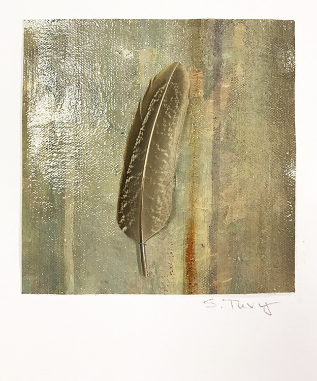 """""""Feather #2"""" 17-24619"""