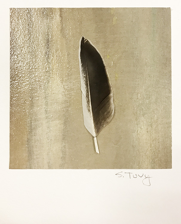 """""""Feather #6  17-24623"""