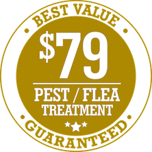 $79 Best Value Pest & Flea Treatment Gold Coast