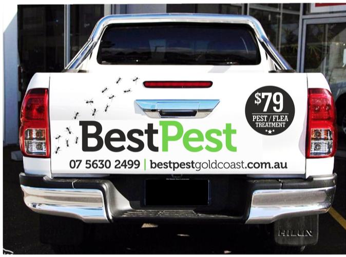 BestPestGoldCoast.png