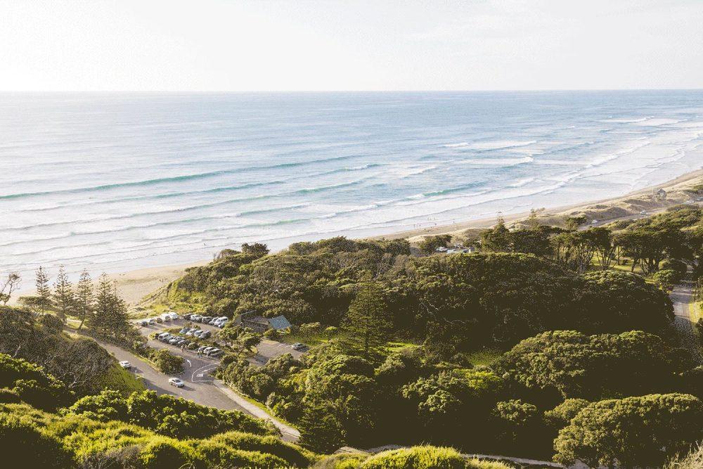 NZ-11.jpg