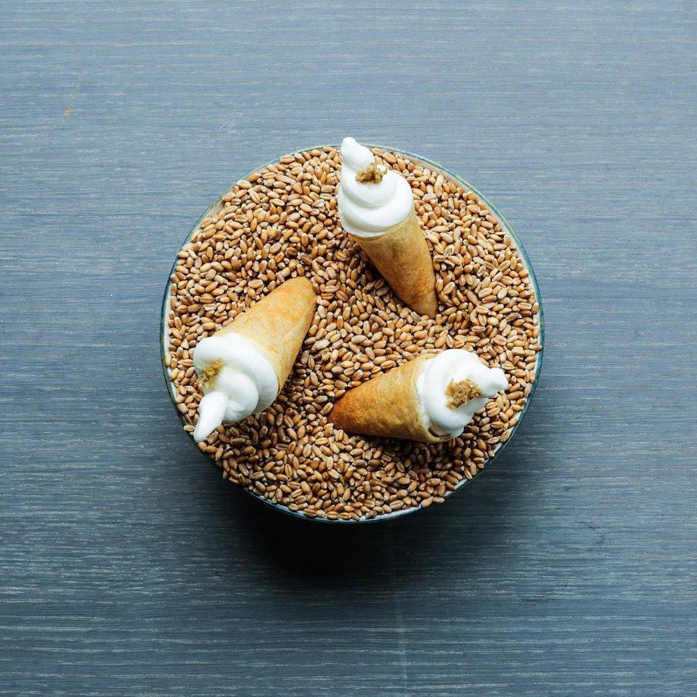 公式インスタグラム @108cph より。ニューノルディックらしい、独創的な料理が振舞われます。(サワードウブレッドのコーンとエルダーフラワーのシャーベット)