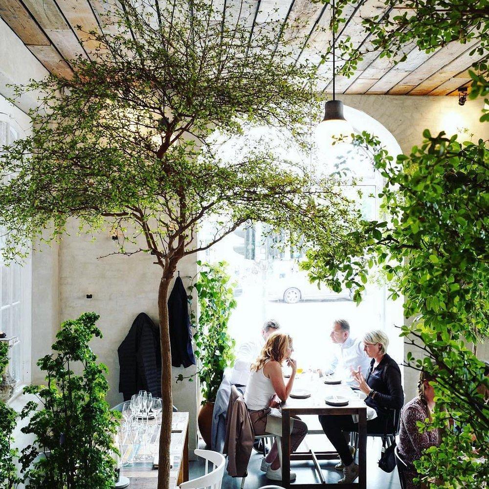 Höstを含め14のレストランを所有する @cofocodkより。どこを切り取っても素晴らしい、Höstの店内。