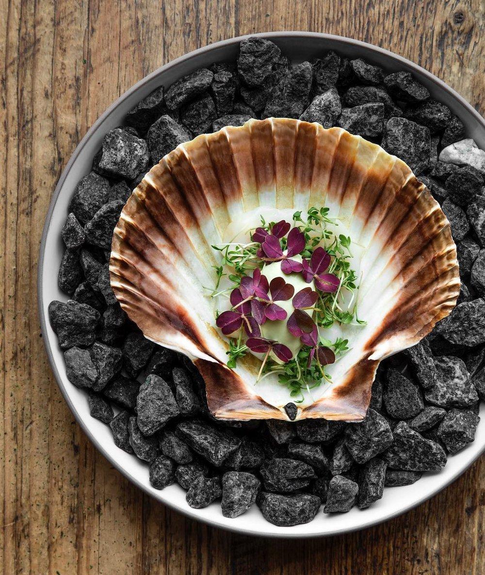 Höstを含め14のレストランを所有する@cofocodk より。ニューノルディックらしい料理が振舞われます。