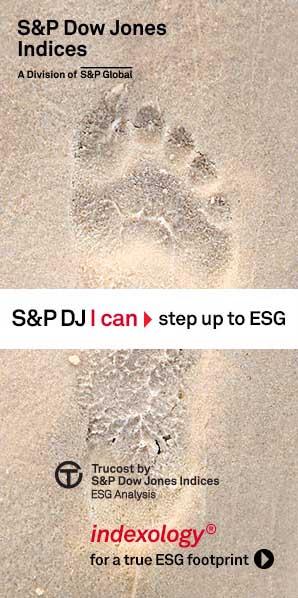 SPDJI-17-9305_ESG_300x600_Static.jpg