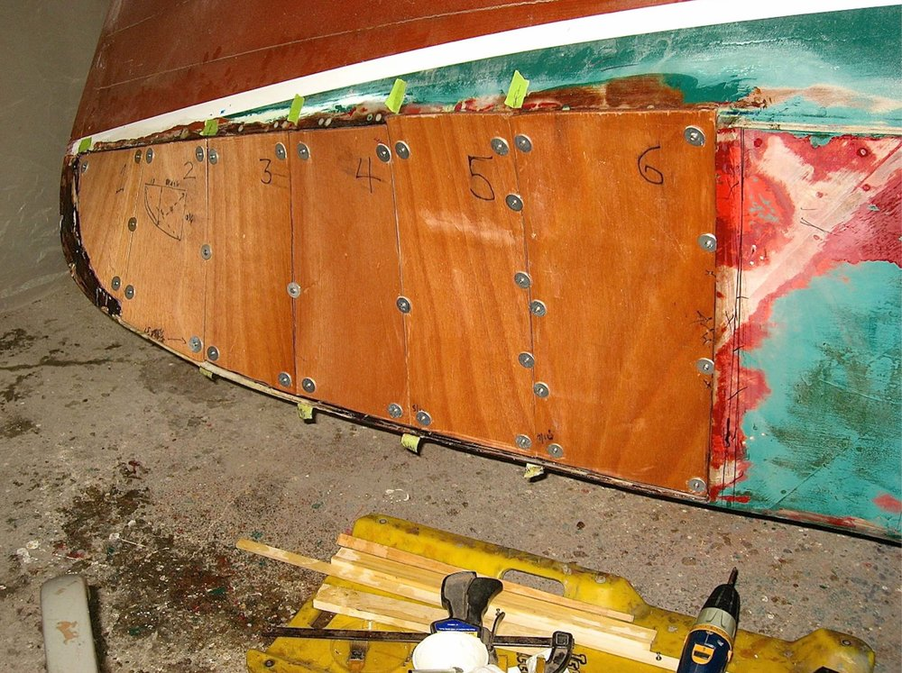 LCACBS Warbler Restoration 1.jpg