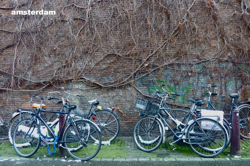 amsterdam street.JPG
