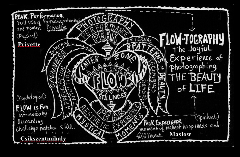overview of flow.jpg