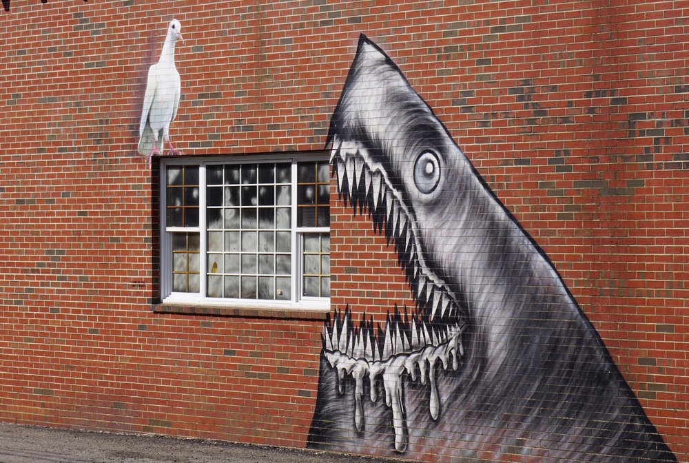 sharkpainting.jpg