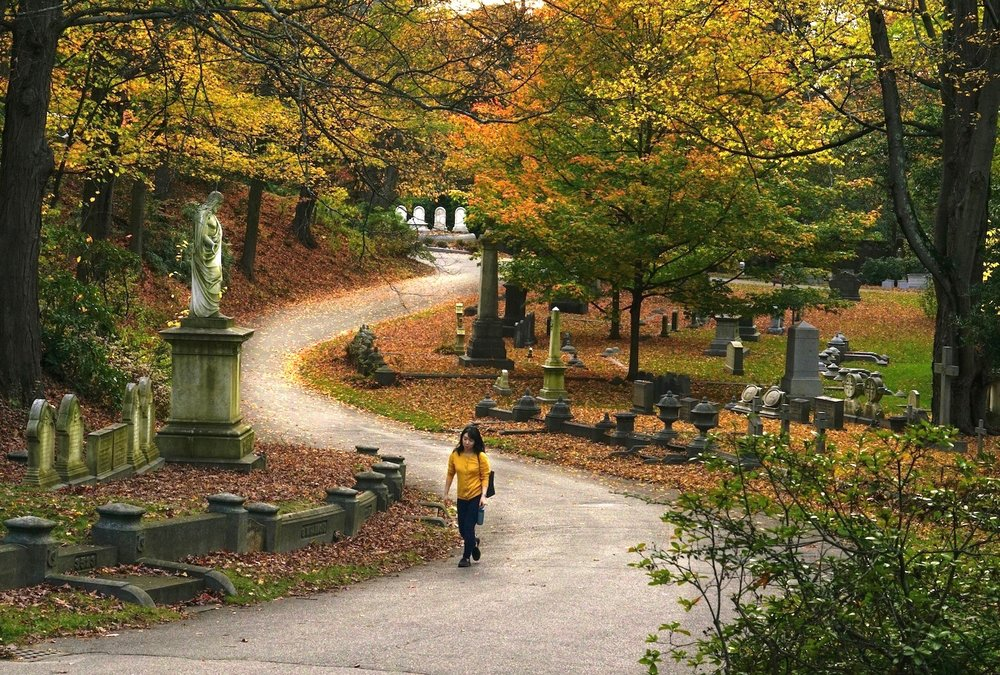 Gestalt Composition Mount Auburn Cemetery
