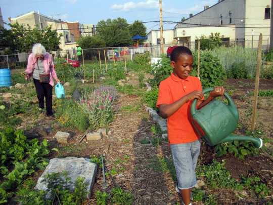 Image Result For How To Start A Organic Garden