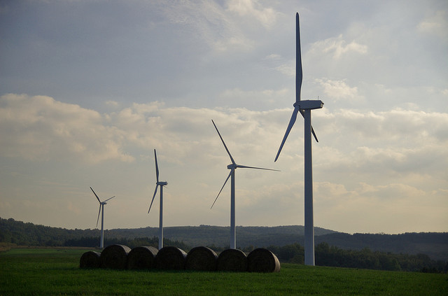 somerset-wind-farm.jpg