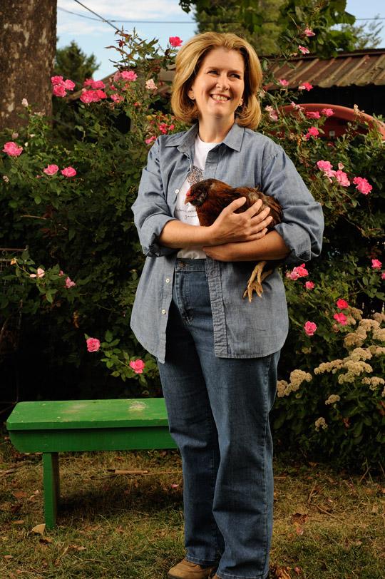chickens5.jpg