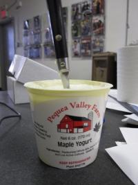 Things I Love Pequea Valley Farm Yogurt Grid Magazine