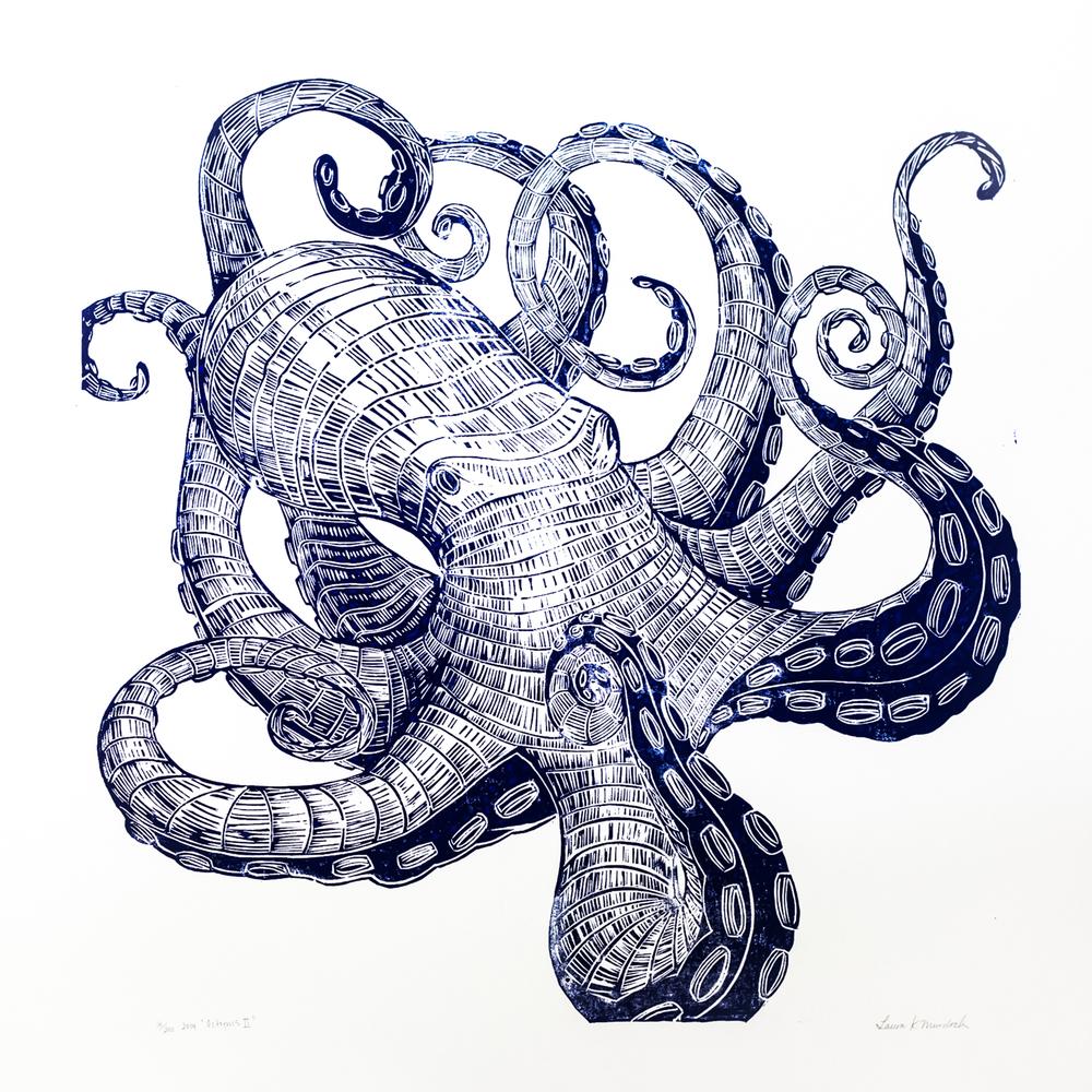 Octopus-2.jpg