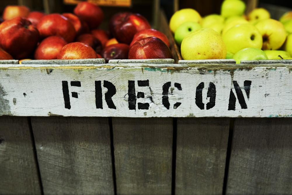 Frecon 2.jpg