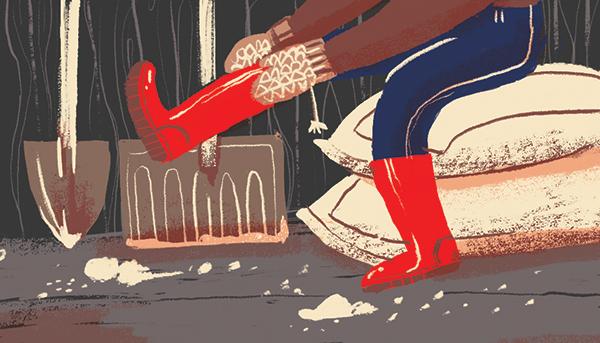 Illustration by Julia Tran