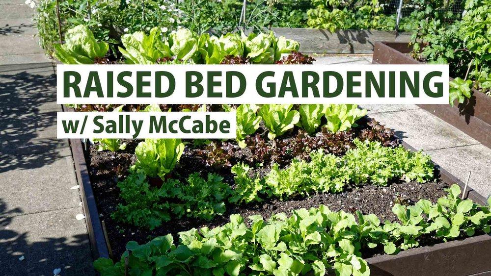 Raised Bed Gardening — Grid Magazine