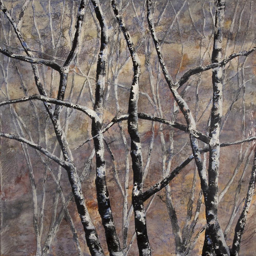Adirondack  November, 16 x 16, wax, oil, 2012.jpg