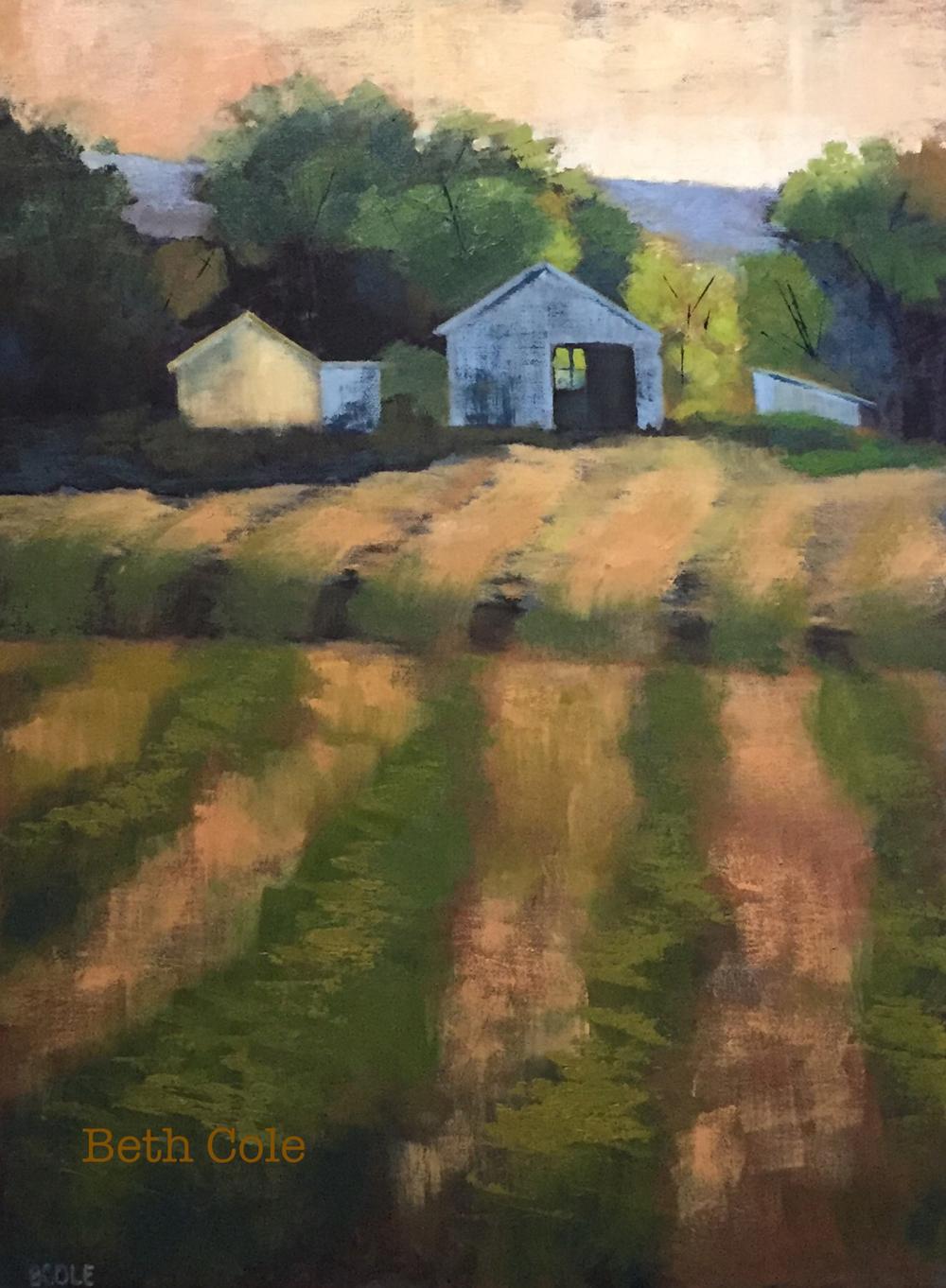 Evening Light - 18 x 24 - Oil on Canvas