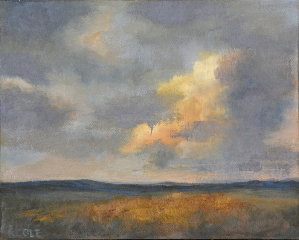 Cloud Study, ©Beth Cole, 8 x 10, Oil on Panel