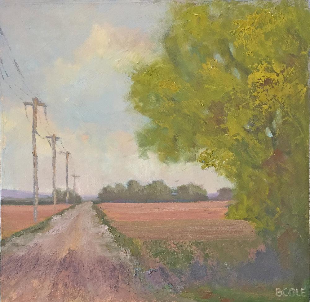 Summer - Oil on Wood Panel - 12 x 12