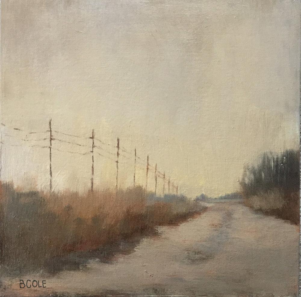 Earth Tones - 12 x 12 - Oil on Canvas
