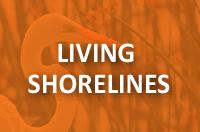 Living Shorelines