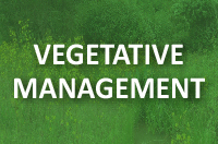 Vegetative Management