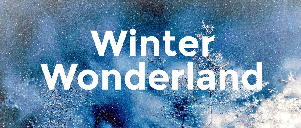 WinterWonderland_Slide.jpg