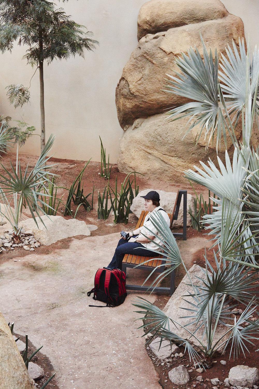 The Tourist , 2014  Digital C-Type Print  70 x 48 cm
