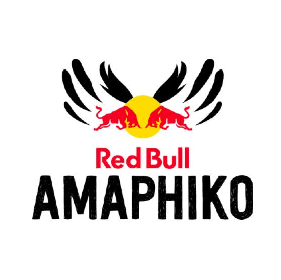 Projet pilote de Redbull en Afrique du Sud, Redbull Amaphiko avait pour objectif de former une dizaine d'entrepreneurs sociaux sud-africains. J'ai dans ce cadre conduit 3 ateliers pour les bénéficiaires de cette initiative inédite :Wordpress, Blogging and Social Media  Pour en savoir plus : https://amaphiko.redbull.com/en