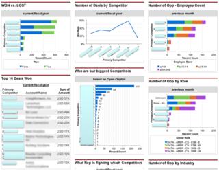 Salesforce.com Win/Lost Dashboard from custom fields.