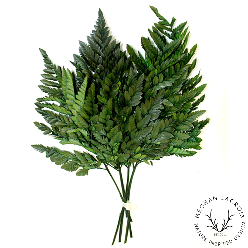 Leatherleaf Fern - Green -