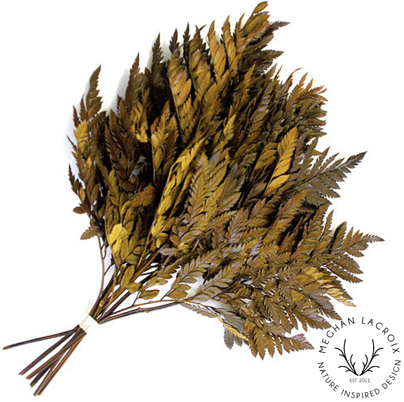 Leatherleaf Fern - Yellow -