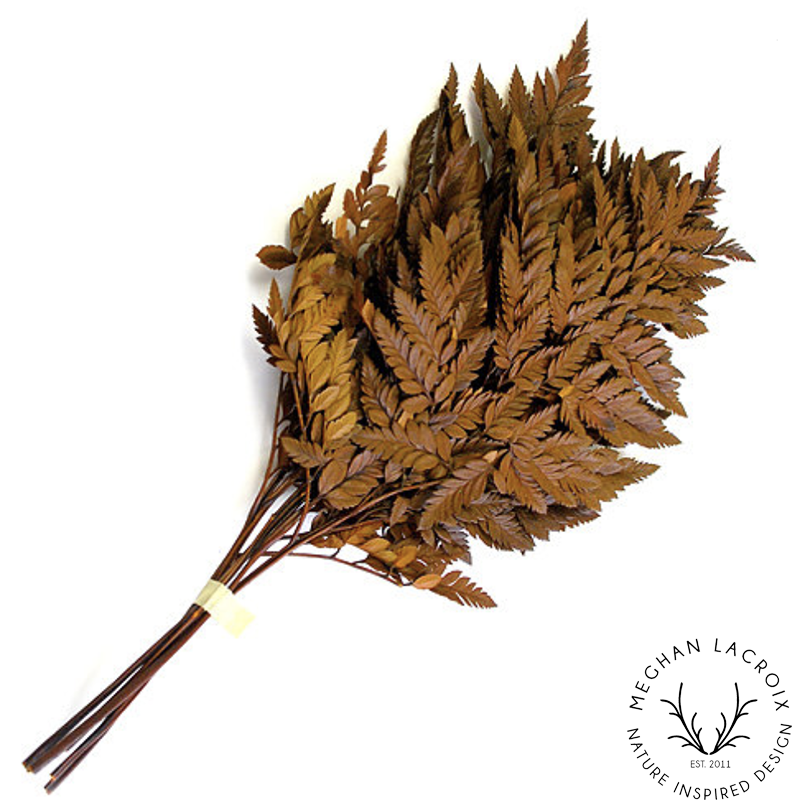 Leatherleaf Fern - Orange -