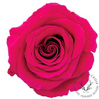Raspberry Pink -