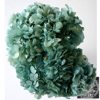 Aqua Blue -