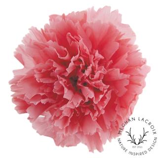 Pink Opal -