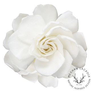 Gardenias - White -